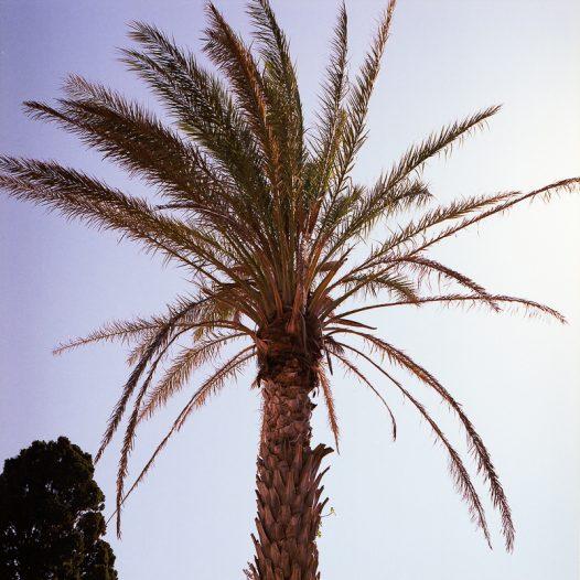 Crete. 2018