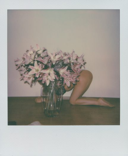 Lillies. 2018